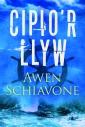 Cipio'r Llyw - Awen Schiavone